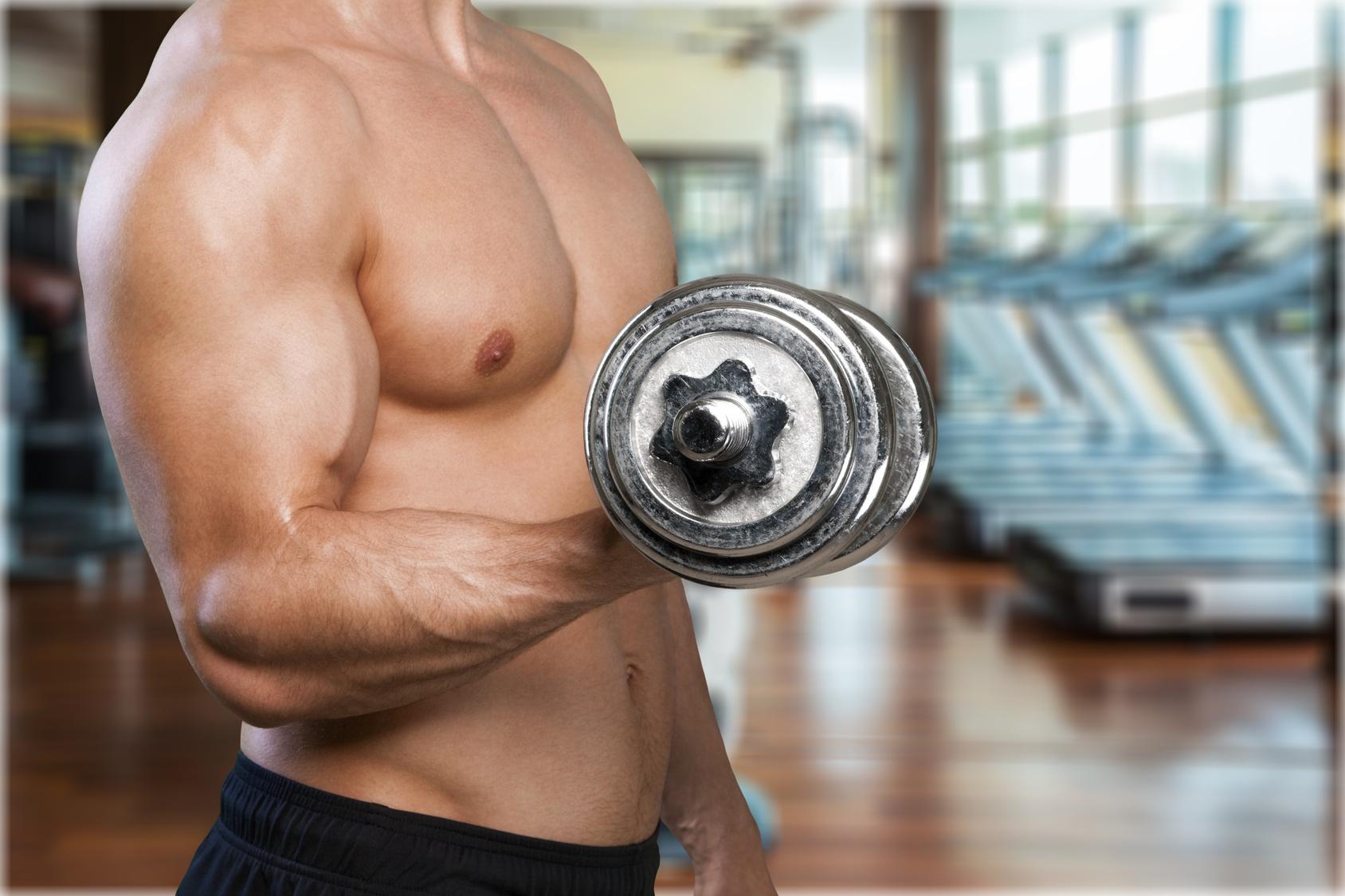programme entrainement biceps